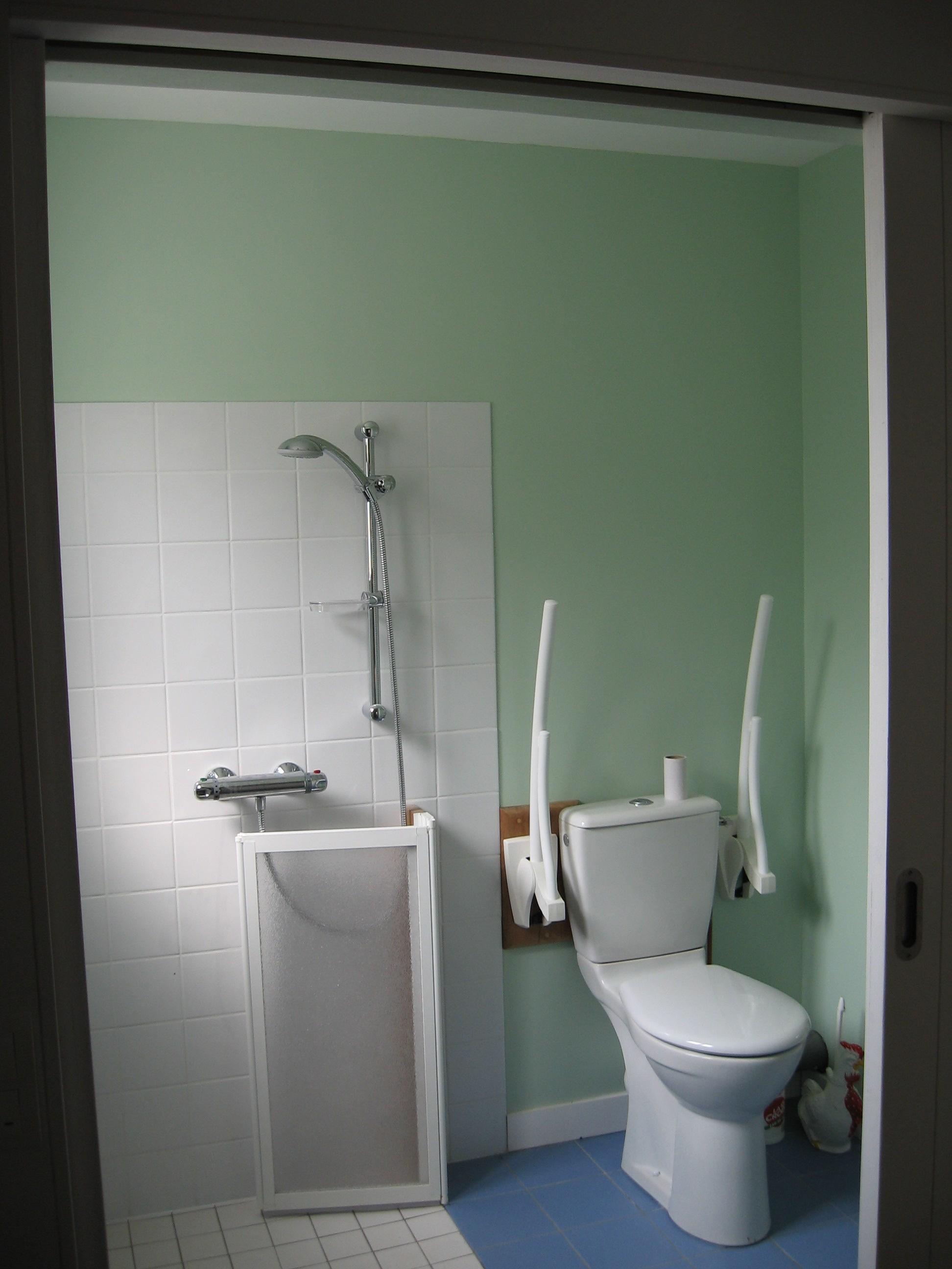 s r habitat vous tes un professionnel wc handicap. Black Bedroom Furniture Sets. Home Design Ideas